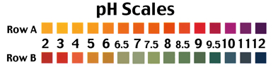 pH of Water test scale