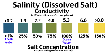 Salinity (Dissolved Salt in Water) test scale