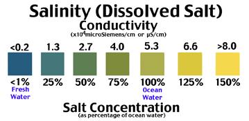 Download # 175 Salinity - Dissolved Salt in Water Test PDF