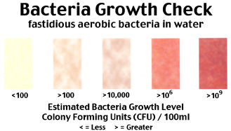 Bacteria Growth Check test scale
